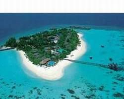 Machchafushi Island Resort South Ari Atoll Maldives
