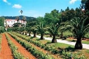 Holiday Villa Beach Resort Cherating Malaysia